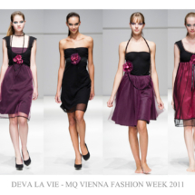 VFW2011_devalavie-web
