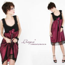 elayne6-web